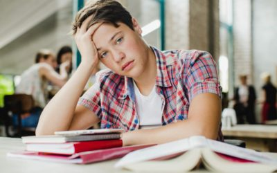 How to take advantage of the study planner in three scenarios. Advice for parents (II)